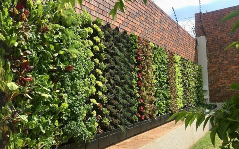 vertical greening tf march 2020