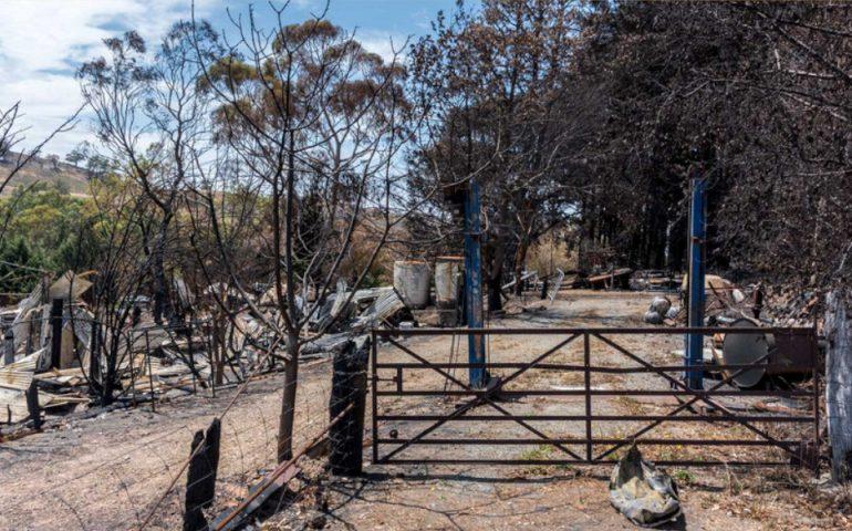 bushfire standards tf march 2020
